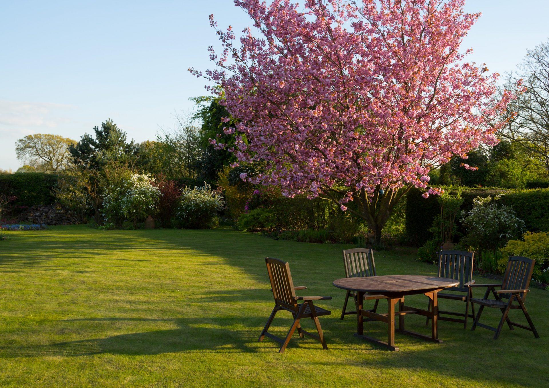 Wedstrijd 'meer natuur in uw tuin'