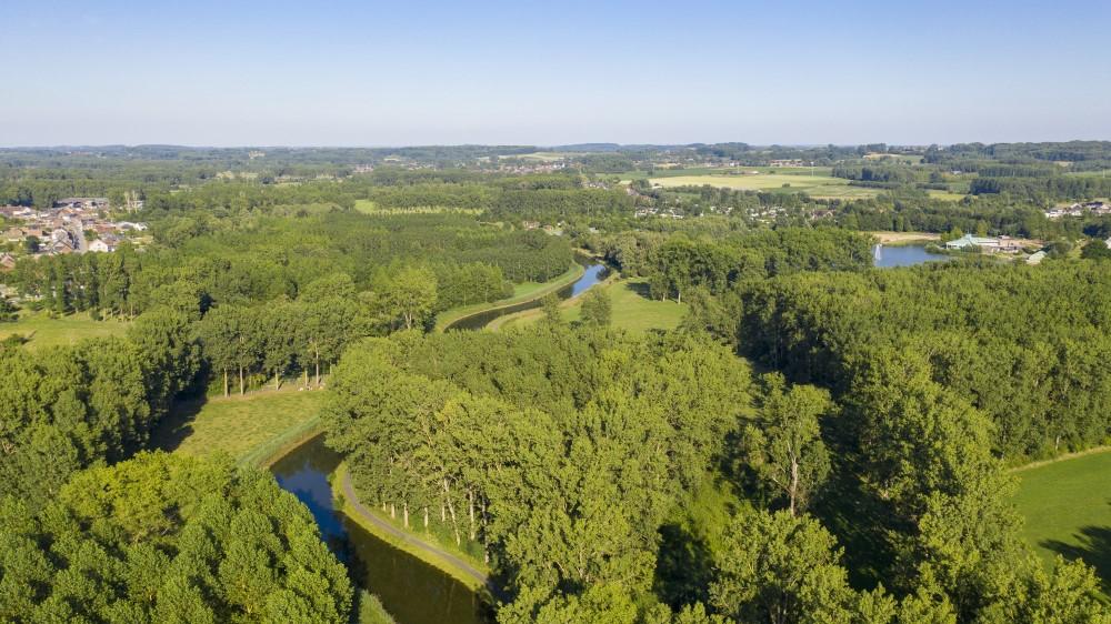 Provincie koopt 8,5 hectare bos voor natuurreservaat